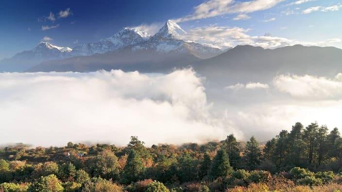 Geliebte Erde – Die Klimakrise als Chance – ein Beitrag auf WDR 5