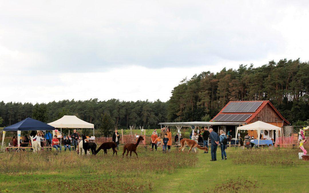 Nachklang zum Eröffnungsfest Alpaka-Love-Lebensgarten