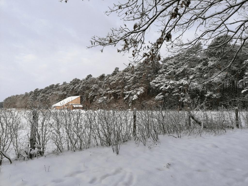 Winter im Lebensgarten